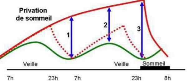 Schéma Privation de sommeil